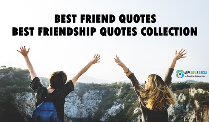 Short Best Friend Quotes: Best Friendship Quotes Collection