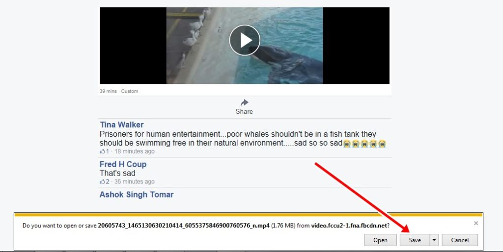 download facebook videos on explorer
